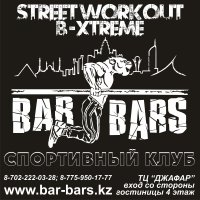 Street Workout Bar Bars